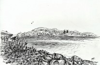 Adyar River [CWA] [6th April 2014]